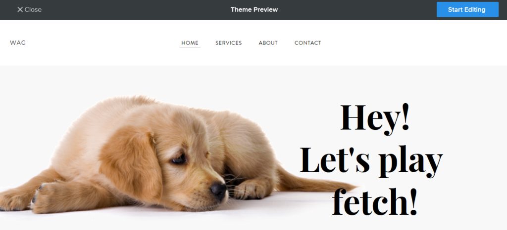 Your Website Theme Builder