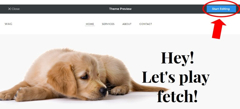 Editing Your Free Website