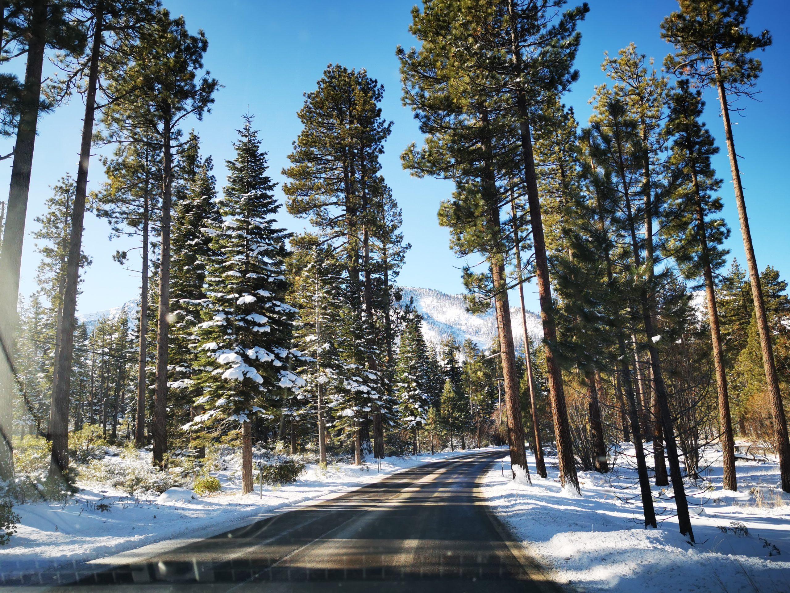 Lake Tahoe Scenic Drive