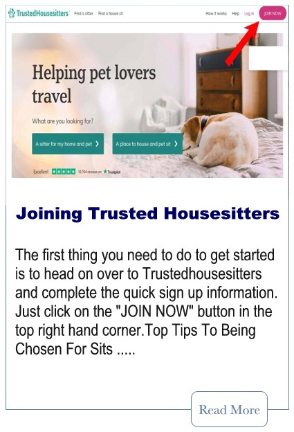 Joining A Pet Sitting Website