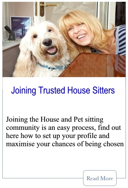 Joining Trusted Housesitters