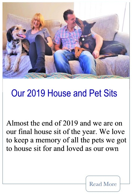 Our 2019 House Sits