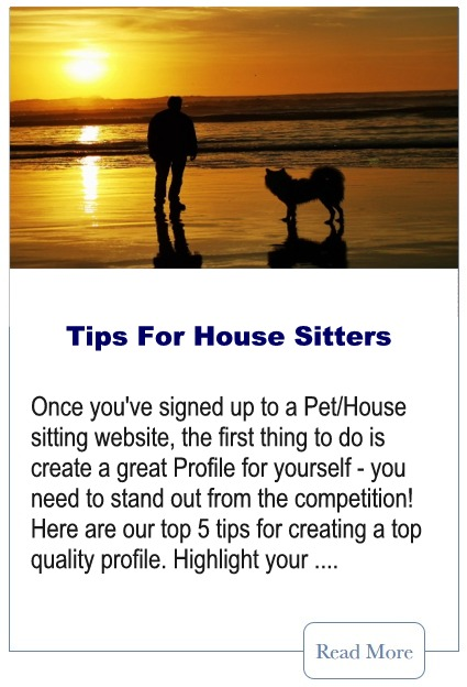 Tips For Pet Sitters
